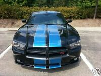 """Dual 6/"""" Dodge Avenger Neon Dart Charger Rally Racing Stripes Stripe with pin"""
