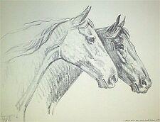 TWO HORSES Original Charcoal Print By Sam Savitt 1973