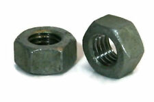 Hex Finish Nuts Hot Dipped Galvanized -1/4