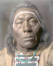 """LEADS WOLF NATIVE AMERICAN INDIAN CROW 1908 8x10"""" HAND COLOR TINTED PHOTOGRAPH"""