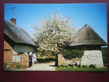 POSTCARD BUCKINGHAMSHIRE CUDDINGTON - GREAT STONE - VIEW OF 2 THATCHED COTTAGES