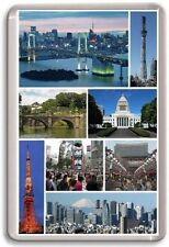 Tokyo Japan Fridge Magnet 01