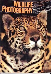WILDLIFE PHOTOGRAPHY - SUSAN RAYFIELD - AMPHOTO, 1982