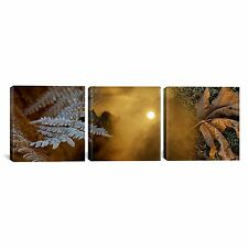 """iCanvasART 3-Piece Cold Feet Leaves by Panoramic Images Canvas Art Print, 48x16"""""""