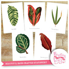 Botanical Tropical Leaf Leaves A4 Vintage Reproduction Prints - Art set of 5