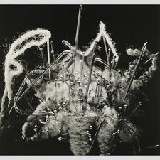 Fritz Brill. Nadelkissen, 1949. Abzug aus dem Nachlass