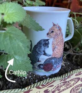 Attention CAT Lovers Vtg Roy Kirkham 8oz Mug Fine Bone China Made in England Gem