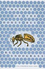 Anatomy of the Honey Bee (Paperback or Softback)