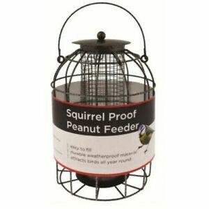Squirrel Proof Bird Peanut Feeder, Feeding Station, Bird Food