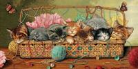 Counted Cross Stitch Dimensions Gold Kit Kitty Litter 18x9