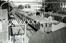 1971 CHATSWOOD STATION Sydney Photo  Train NSWGR POSTAGE DISCOUNT