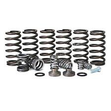 94-98 DODGE RAM 5.9L DIESEL BD-POWER 4000 RPM GOVERNOR SPRING KIT.