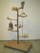 FREISITZ aus Holz Papageienfreisitz Sittiche Papageienspielzeug JAVA WURZELHOLZ
