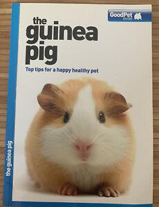 guinea pig care book