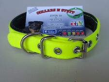 Padded Dog Collar- Terrier, Whippet, Small Dog 20mm x 450mm LIME