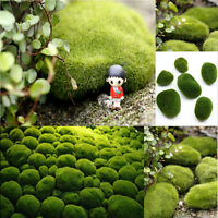 3 Size New Green Moss Stone For Plant Pots Fairy Miniature Decor Garden Ornament
