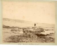 Algérie, Vue d'Alger prise de la Plage de Mustapha  Vintage albumen print.