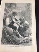 H2-2 Ephemera 1872 Book Plate - The Amazon Native Lady Extracting Chegoes
