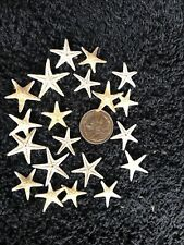 20 Real Star Fish  10 To 15 mm