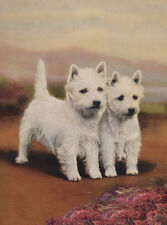 WEST HIGHLAND WHITE TERRIER CHARMING WESTIE DOG GREETINGS NOTE CARD TWO DOGS