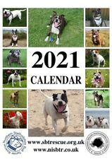 Northern Staffordshire Bull Terrier Rescue 2021 Calendar Charity Staffie Staffy