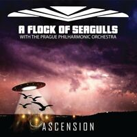 A Flock Of Seagulls - Ascension (NEW CD ALBUM)