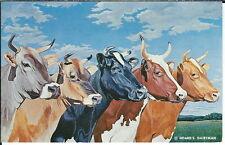 AY-330 - Hoard's Dairyman Five Queens Cows, 1961 Modern Chrome Postcard Vintage