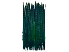 "USA Pheasant Feathers, 20-22"" Peacock Green Ringneck Tail Feathers - 50 Pieces"