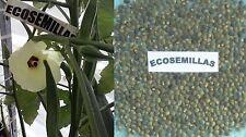 Okra verde, quimbombo, gombo, CURATIVA, 70 semillas ECOLÓGICAS, COMPRA 2 ENVÍO 3