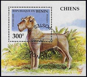 BENIN 1995 SCHNAUZER DOGS  S/S DOMESTIC  ANIMALS