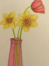 colored pencil drawing flowers daffodil and tulip flowers