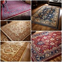 Traditional Oriental Persian Classic Style Thick Rug Home Living Room Carpet