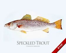 SPECKLED TROUT FISH PAINTING AMERICAN FRESHWATER FISHING ART REAL CANVAS PRINT