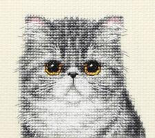 EXOTIC GREY TABBY CAT, KITTEN Full cross stitch kit, all materials *Fido Studio