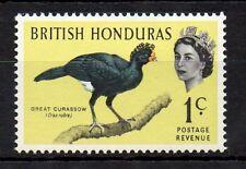 British Honduras 1962 Birds - Great Curassow MNH stamp