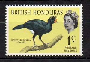 British Honduras 1962 Birds - The 1c Great Curassow MNH stamp S.G. 202