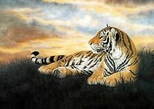 Nice oil painting wild animal yellow tiger on grass in landscape canvas 36