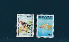 Cameroun  faune oiseaux  épervier  rossignol     1992  num: 863/64  **