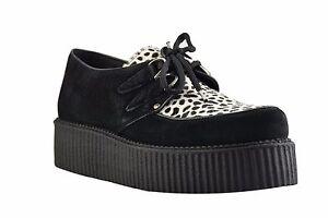 STEEL GROUND Zapatos ante Negro Leopardo Creepers Alto Suela D Anillo Informal