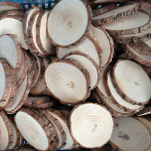 30X Natural Wood Slices Round Disc Tree Bark Log Wooden Circles for DIY Craft US