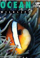 Ocean Wildlife by Jinny Johnson (Hardback, 1993)