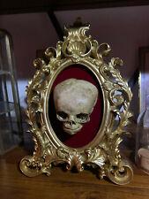 Oddities / Cabinet de curiosités / cadre baroque réplique Crane foetus humain