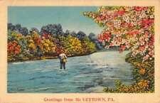 1770 PA MAP McVeytown Sayer Leighton Renovo Altamont Old Pennsylvania History