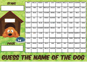 GUESS THE NAME OF DOG FUNDRAISING SCRATCHCARD RACE NIGHT GAME 100 Squares puppy