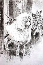 Morgan Dennis 1946 Standard White Show Poodle at Stage Door Vintage Dog Print