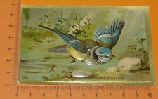 CHROMO BON-POINT IMAGE ECOLE Gaufré 1890-1910 ANIMAUX OISEAU MESANGE