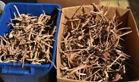 CHEAP NANO Red Moor AQUARIUM WOOD min 15cm fish root java moss fern bogwood