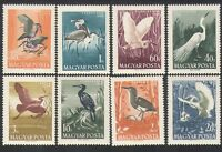 Hungary 1959 Water Birds/Waterfowl/Herons/Egret/Ibis/Nature/Wildlife 8v (n35343)