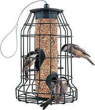 Squirrel Proof Bird Feeders (22 oz.) Large Bird Feeder with 4 Perches - Bird Fee