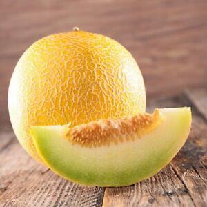 Seeds Sweet Honeydrew Melon Yellow Friuts for Planting Organic Heirloom Ukraine